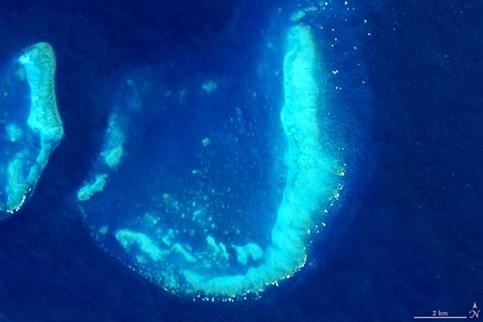 Trunk Reef near Townsville, Australia